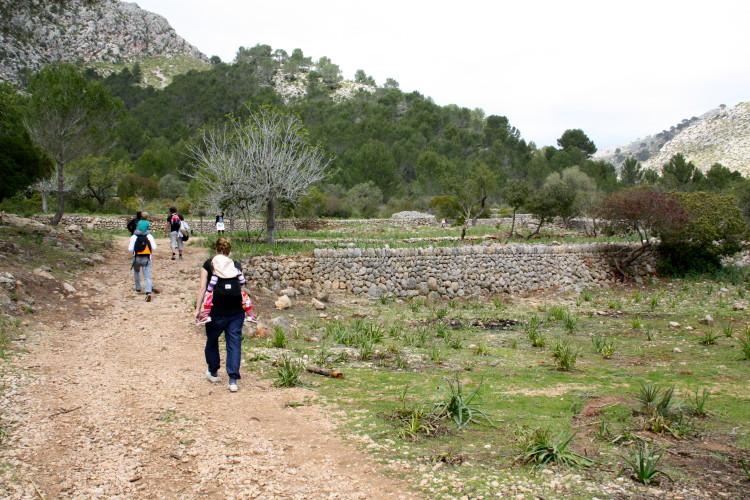 Vandring, utflykt, vandra, Mallorca, Tramuntana,
