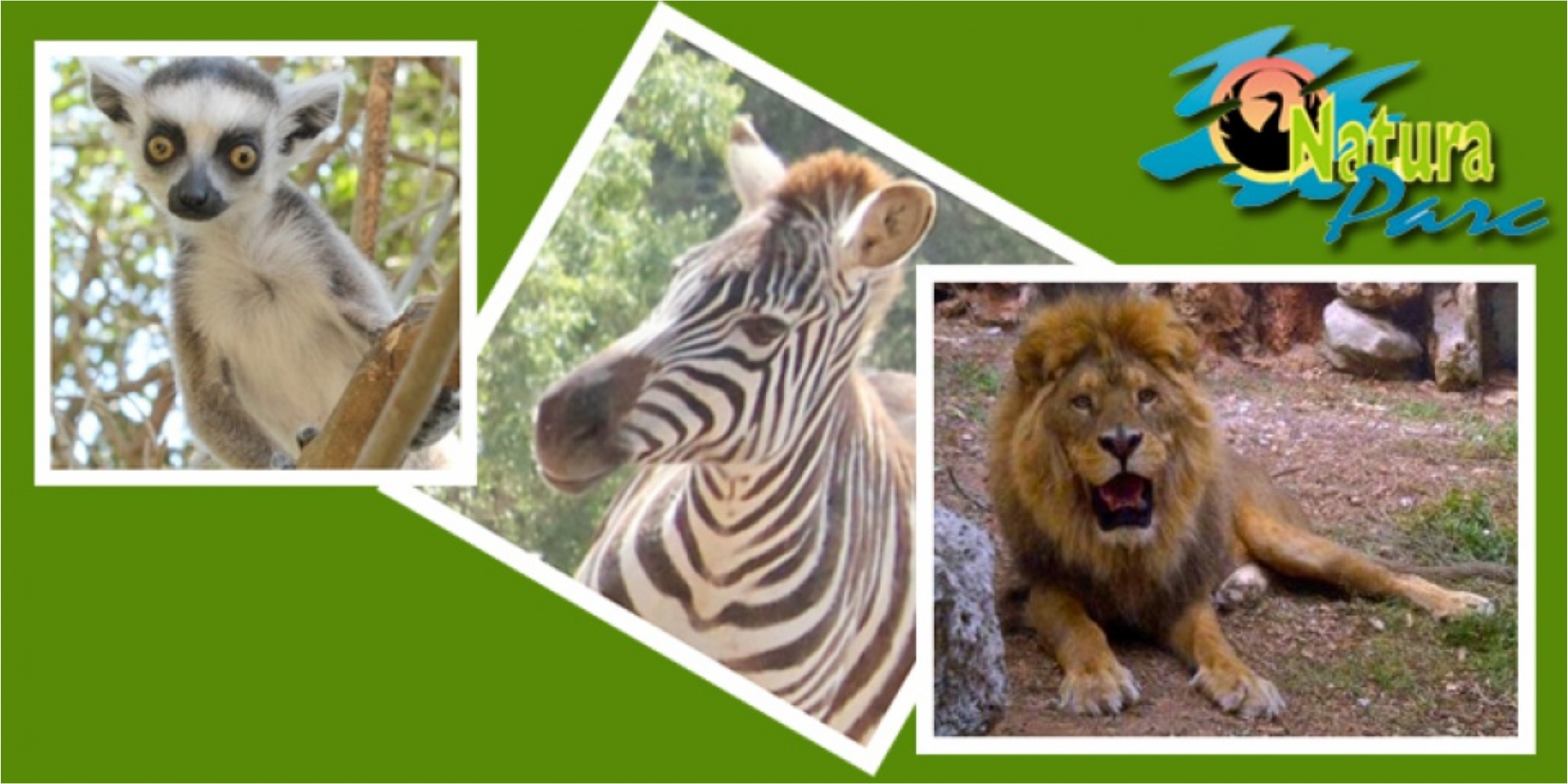 Zoo, Natura Parc, Sant Eugenia, Utflykt, barnaktivitet, Utomhusaktivitet