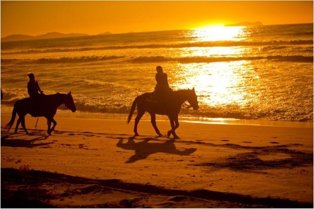 Unicorn hästridning på Mallorca