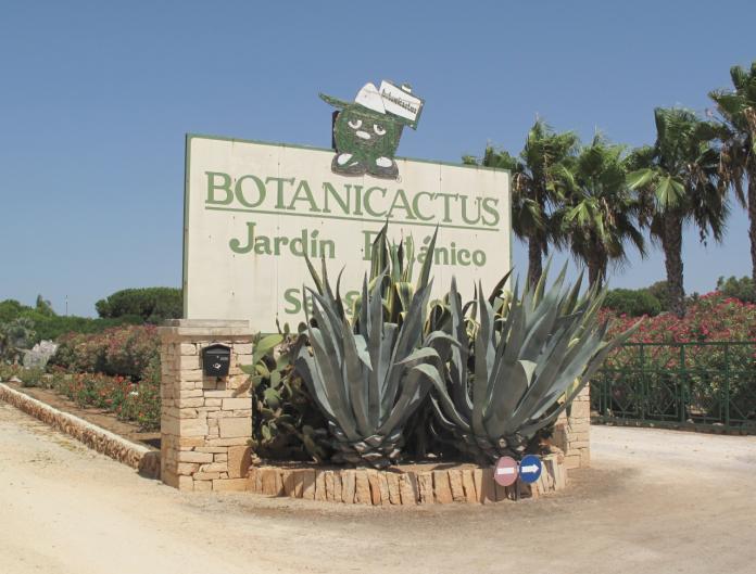 Ses Salines, Mallorcas östkust, Colonia de Sant Jordi, saltutvinning, kaktusar, botanisk trädgård,