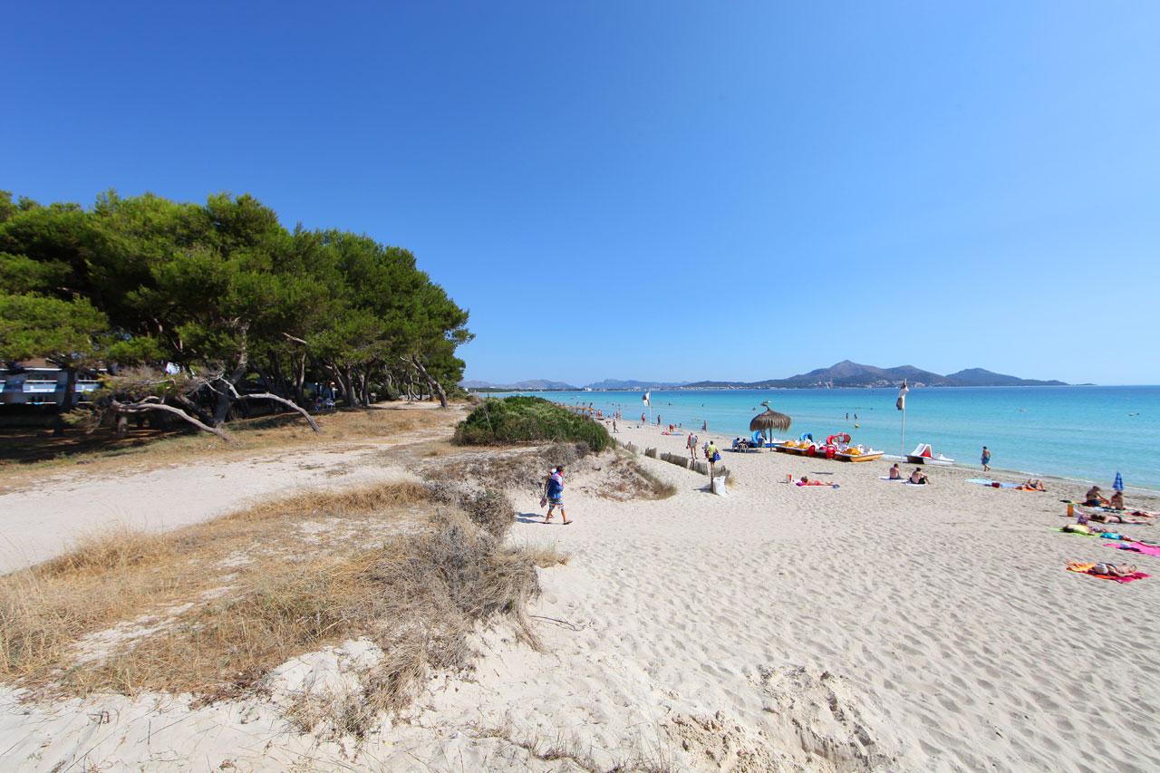 Playa De Muro Alcudia Mallorcaguide