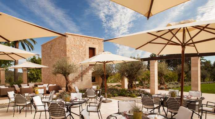 Zaranda på Castell Son Claret, Mallorca